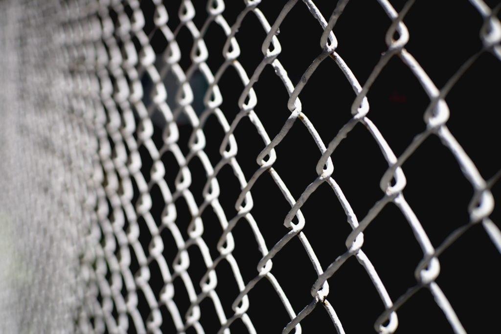 chain-link-best-chicken-fence